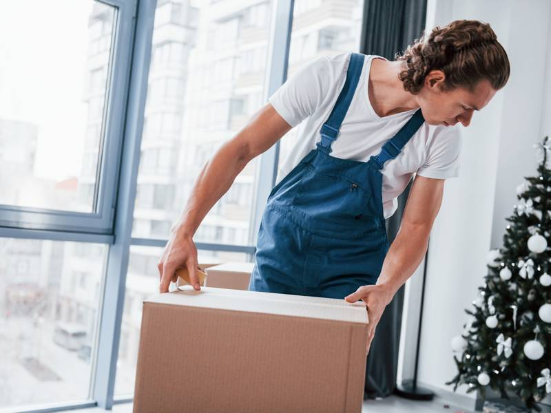 What are Professional Movers?
